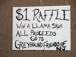 Llama Skull Raffle: DIY Signage